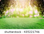 bokeh and grass on background... | Shutterstock . vector #435221746