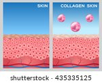 collagen turn a skin to white... | Shutterstock .eps vector #435335125