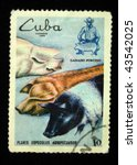 cuba   circa 1989  a stamp... | Shutterstock . vector #43542025