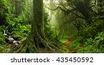 tropical jungle   Shutterstock . vector #435450592