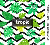 summer background with tropical ... | Shutterstock .eps vector #435493582