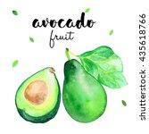 avocado watercolor illustration | Shutterstock . vector #435618766