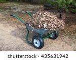 Wheelbarrow Stands On Backyard...