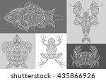 Vector Images Fish  Sea Turtle...