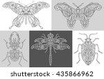 vector image butterflies ... | Shutterstock .eps vector #435866962