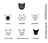 set of cat breeds with names 3. ... | Shutterstock .eps vector #435990262