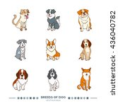 breeds of dog set. funny... | Shutterstock .eps vector #436040782