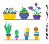 set of flowers in the pots.   Shutterstock .eps vector #436053625