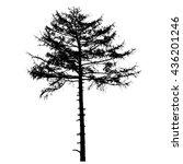 vector illustration of tree...   Shutterstock .eps vector #436201246