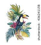illustration tropical floral... | Shutterstock . vector #436241158