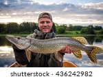 portrait with huge pike | Shutterstock . vector #436242982