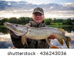 happy angler with huge pike at... | Shutterstock . vector #436243036