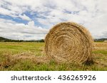 Close Up Hay Ball On Field Wit...