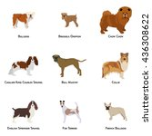set of different dog breeds on... | Shutterstock .eps vector #436308622