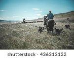chilean gaucho herding sheep at ... | Shutterstock . vector #436313122