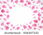 Stock photo pink petals of peony flowers lying on white background with place for text in the middle of the 436347232