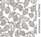 hand drawn engraving style hops ... | Shutterstock .eps vector #436370662