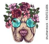 hippie sharpei in the roses... | Shutterstock .eps vector #436511686