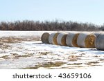 Bails Of Hay On Snowy Field