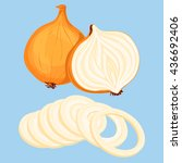whole bulb onion  half and... | Shutterstock .eps vector #436692406