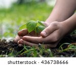 children's hands embrace a... | Shutterstock . vector #436738666