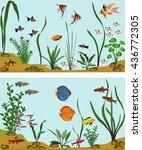 different species of freshwater ... | Shutterstock .eps vector #436772305