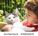 Preteen Handsome Boy And Cat...