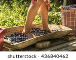 feet to crush grapes old...