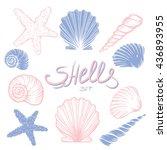 set of hand drawn seashells... | Shutterstock .eps vector #436893955