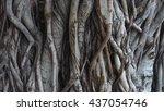 Tree Trunk Grunge Natural ...