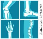 set of human joints  knee joint ... | Shutterstock .eps vector #437149702
