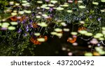 poppies reflecting in water... | Shutterstock . vector #437200492