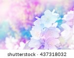 spring landscape with delicate... | Shutterstock . vector #437318032
