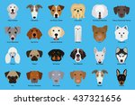 set of different dog breeds on... | Shutterstock .eps vector #437321656