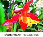 watercolor pattern flower... | Shutterstock . vector #437338456