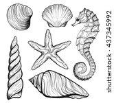 set of stylized seashells... | Shutterstock .eps vector #437345992