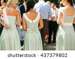 the bridesmaids | Shutterstock . vector #437379802