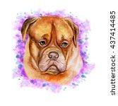 Watercolor Closeup Portrait Of...