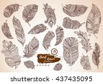 artistically drawn  stylized ...   Shutterstock .eps vector #437435095