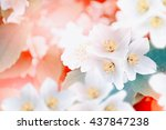 spring landscape with delicate... | Shutterstock . vector #437847238