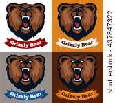 grizzly mascot  team logo...