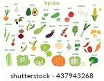 vegetables graphic vector color ...   Shutterstock .eps vector #437943268