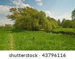 meadow and tree | Shutterstock . vector #43796116