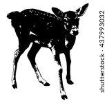 silhouette of roe deer   Shutterstock .eps vector #437993032