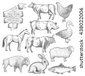 farm collection. hand drawn... | Shutterstock .eps vector #438022006