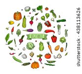 hand drawn doodle vegetables... | Shutterstock .eps vector #438113626