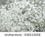 wedding flowers | Shutterstock . vector #438213058