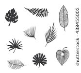 set tropical leaves.hand draw | Shutterstock . vector #438455002