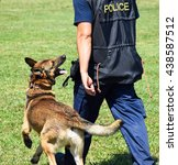police man with his dog | Shutterstock . vector #438587512