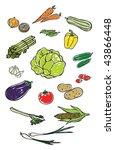 colorful vegetables | Shutterstock .eps vector #43866448